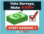 Is Survey Voices Legit