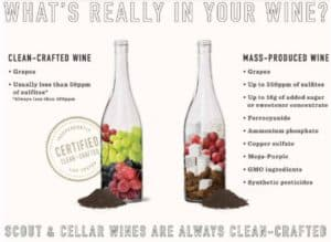Scout and Cellar Review: Clean Crafted Wine