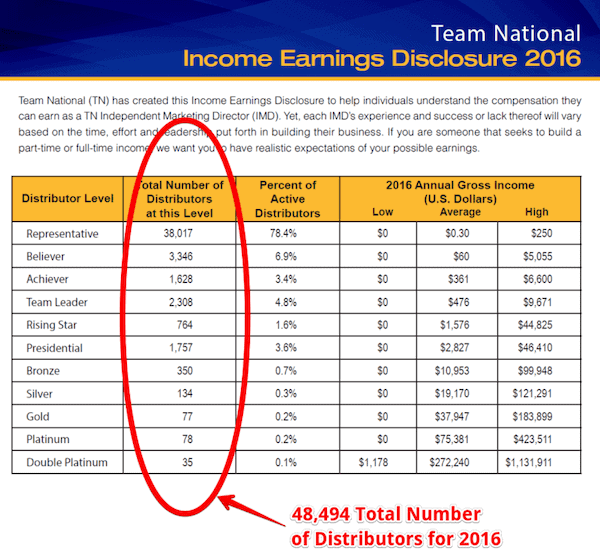 is team national a pyramid scheme- income disclosure-min