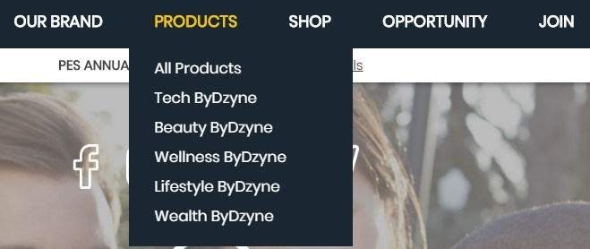 Is ByDzyne a Scam: Categories