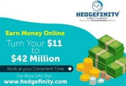 Is Hedgefinity a Pyramid Scheme: Compensation