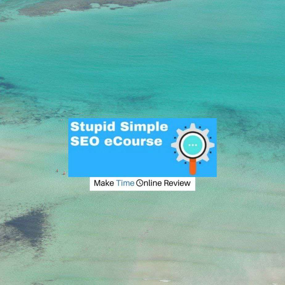 Is Stupid Simple SEO a Scam: Logo